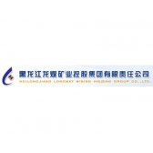 黑龙江龙煤矿业控股集团