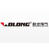 Wolong electric group co., LTD
